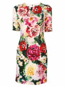 Dolce & Gabbana floral print dress - Pink