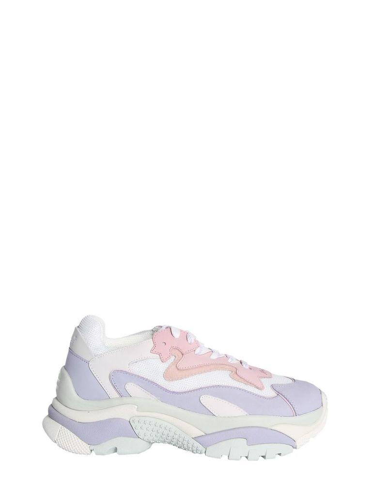 Ash Bis Addict Sneakers