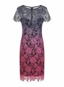 Womens **Paper Dolls Ombre Short Sleeve All Over Lace Dress- Multi Colour, Multi Colour
