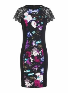 Womens **Paper Dolls Multi Coloured Lace Print Bodycon Dress- Multi Colour, Multi Colour