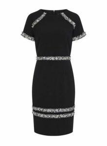Womens **Paper Dolls Black Boucle Pearl Trim Bodycon Dress- Black, Black