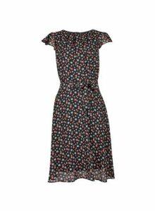 Womens **Billie & Blossom Tall Black Floral Print Skater Dress- Multi Colour, Multi Colour