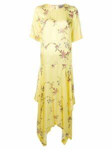 Preen By Thornton Bregazzi asymmetric maxi dress - Yellow