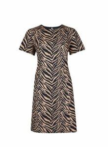 Womens Petite Multi Coloured Zebra Print Fit And Flare Dress- Black, Black