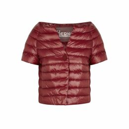 Herno Dark Red Quilted Shell Jacket