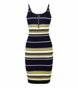 Pink Vanilla Navy Stripe Ring Zip Dress New Look