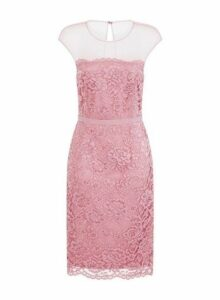 Womens **Little Mistress Blush Lace Bodycon Dress- Blush, Blush