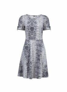 Womens **Tall Grey Snake Print Skater Dress- Grey, Grey