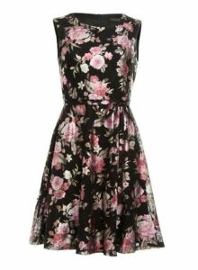 Womens *Tenki Black Floral Print Skater Dress- Black, Black