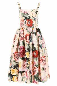 Dolce & Gabbana Printed Midi Dress