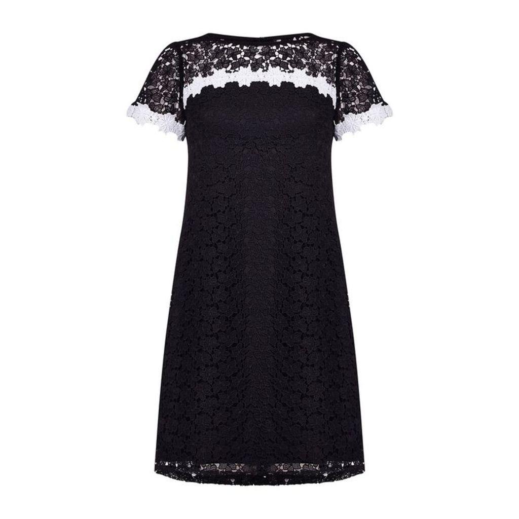 Adrianna Papell Ditsy Fl Lace Shift Dress