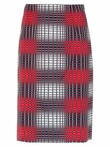Reinaldo Lourenço checked straight skirt - Multicolour