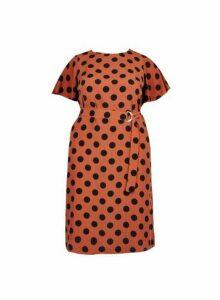 Womens **Dp Curve Brown Spot Print Flutter Midi Dress- Brown, Brown