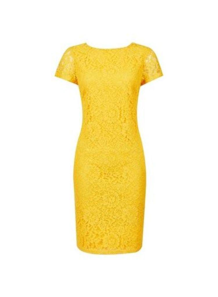 Womens Yellow Short Sleeve Lace Shift Dress- Orange, Orange