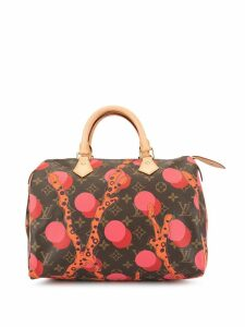 Louis Vuitton Pre-Owned Speedy 30 handbag - Multicolour