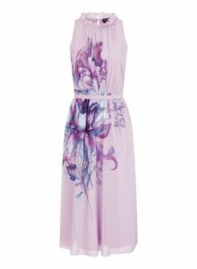 Womens **Little Mistress Blush Floral Print Midi Prom Dress- Pink, Pink