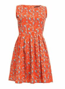 Womens *Tenki Orange Parrot Print Skater Dress- Red, Red