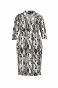 Womens Dorothy Perkins Curve Snake Print Shirt Midi Dress -  Cream
