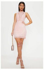 Dusty Pink Lace Open Back Bodycon Dress, Dusty Pink
