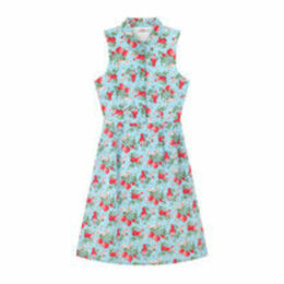 Mini Wild Strawberry Sleeveless Cotton Cambric Shirt Dress