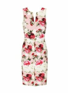 Womens **Paper Dolls Pink Rose Floral Print Bodycon Dress- Pink, Pink