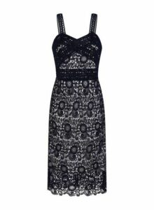 Womens **Paper Dolls Navy Contrast Lace Bodycon Dress- Blue, Blue