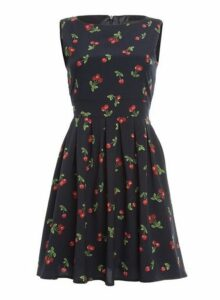 Womens *Tenki Navy Cherry Print Skater Dress- Blue, Blue