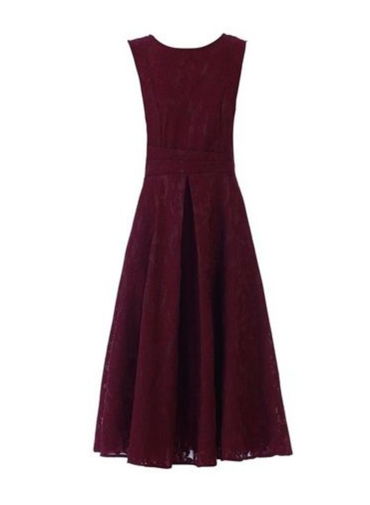 Womens *Jolie Moi Burgundy Lace Bonded Dress- Burgundy, Burgundy