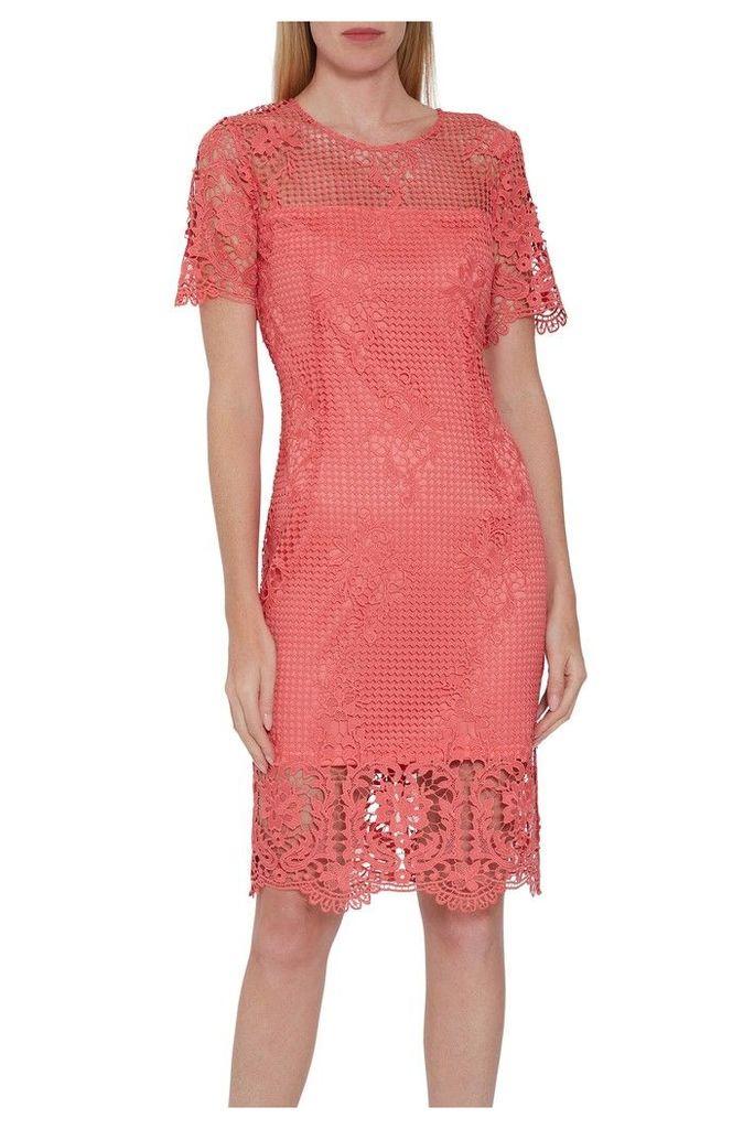 Womens Gina Bacconi Orange Luzetta Lace Dress -  Orange