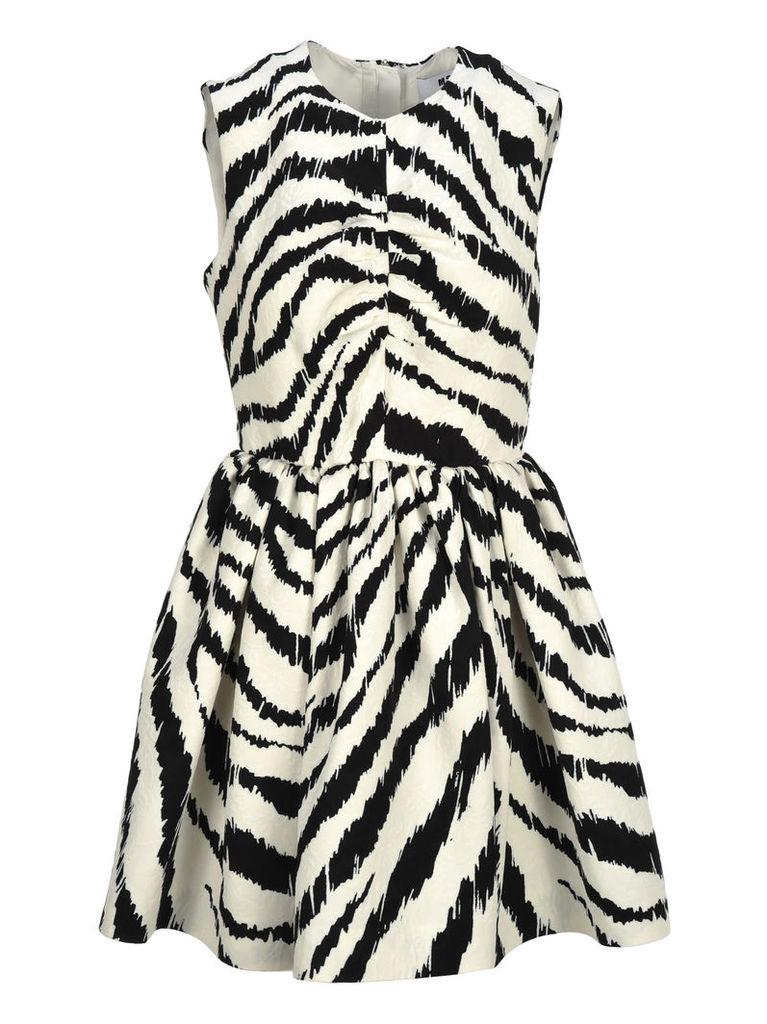 Msgm Dress Zebra Print