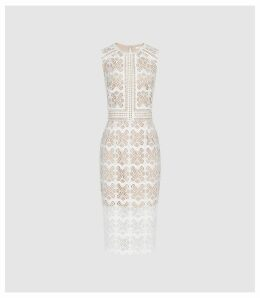 Reiss Coral - Lace Slim Fit Midi Dress in White, Womens, Size 4