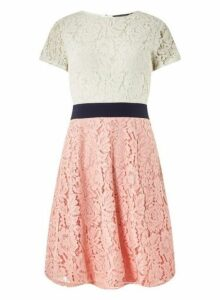 Womens Blush And Ivory Colour Block Lace Skater Dress- Pink, Pink