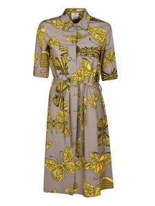 Ultrachic Butterfly Print Dress