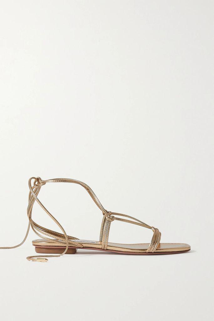 Rasario - Cropped Lace Top - Black
