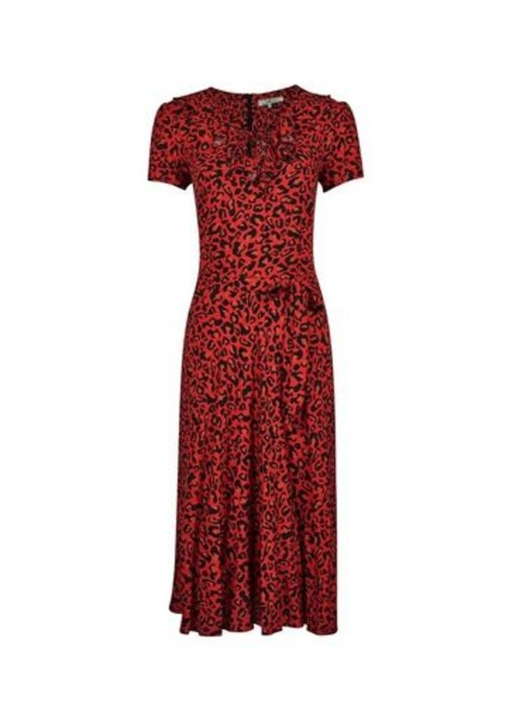 Womens **Billie & Blossom Tall Red Leopard Print Fit And Flare Dress- Red, Red