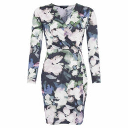 French Connection  Long Sleeve V Neck Heart Cover Dress  women's Dress in Blue