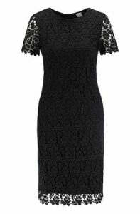 Fully lined lace shift dress with side stripe