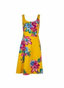 Womens Yellow Floral Print Seam Fit And Flare Dress- Yellow, Yellow