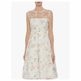 Gina Bacconi Hestia Organza Rose Print Dress, Pink/Multi