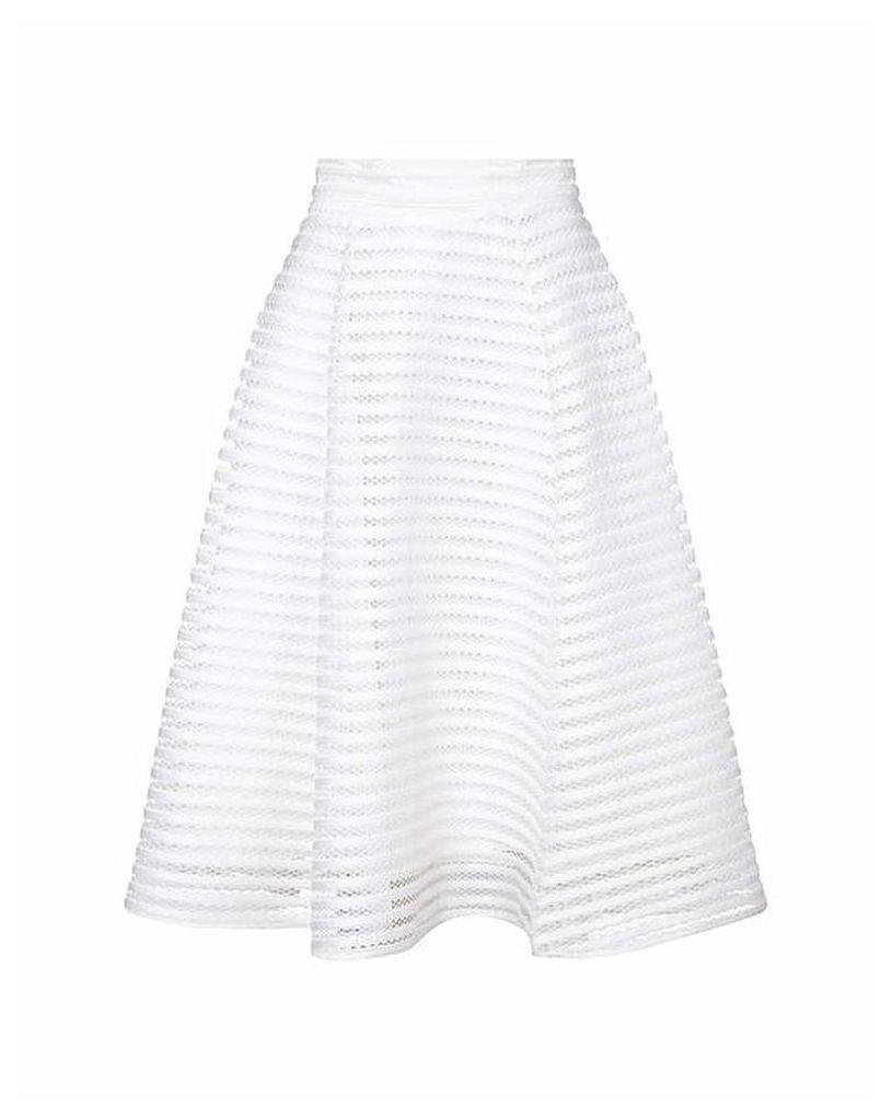 Yumi Curves Fishnet Skater Skirt