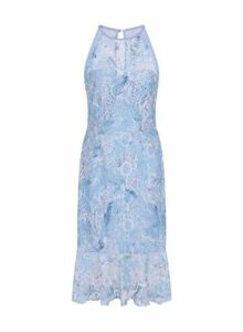 Womens **Paper Dolls Blue Lace Halterneck Dress- Blue, Blue