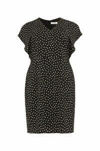 Womens Studio 8 Black Natasha Spot Dress -  Black