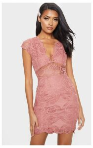 Rose Lace Bodycon Cap Sleeve Dress, Pink