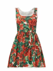 Dolce & Gabbana - Geranium Print Cotton Mini Dress - Womens - Red Multi