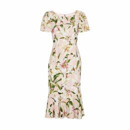 Dolce & Gabbana Lily-print Cady Dress