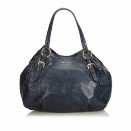 Prada Blue Metallic Leather Cervo Hobo Bag