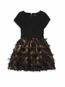 Little Girl's & Girl's Mesh-Trimmed Dress