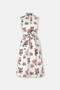 Chiswick Rose Tie Waist Shirt Dress