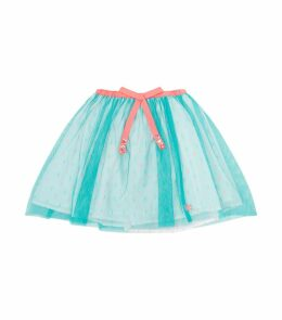 Embroidered Tulle Skirt