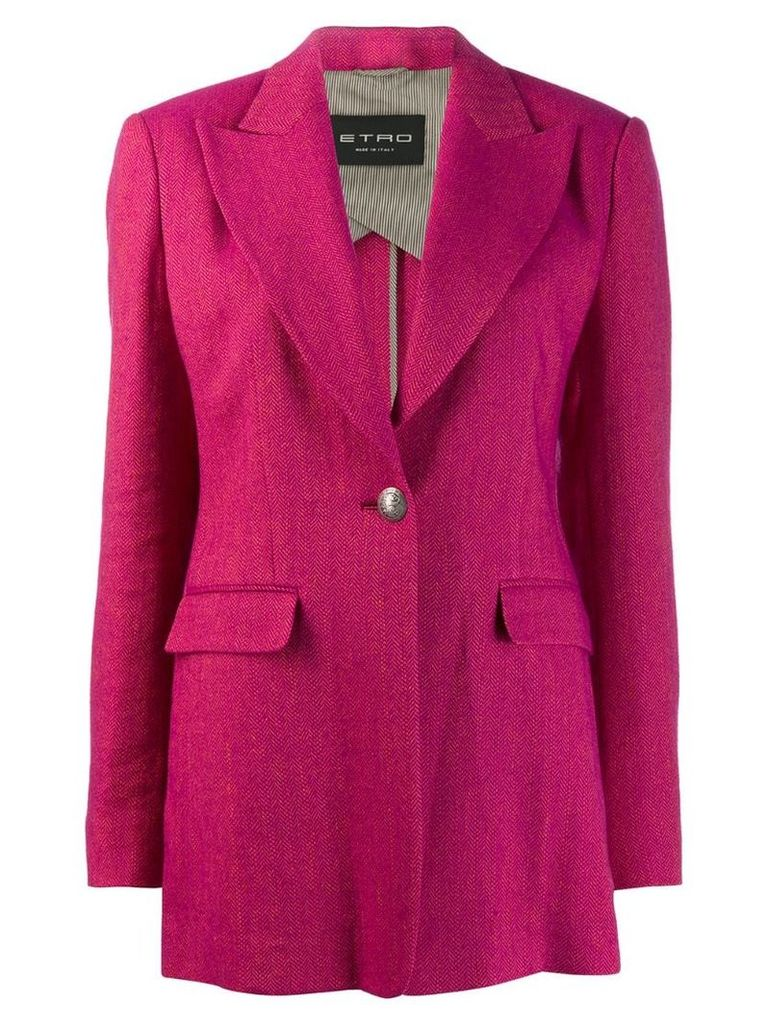 Etro chevron pattern blazer - Pink